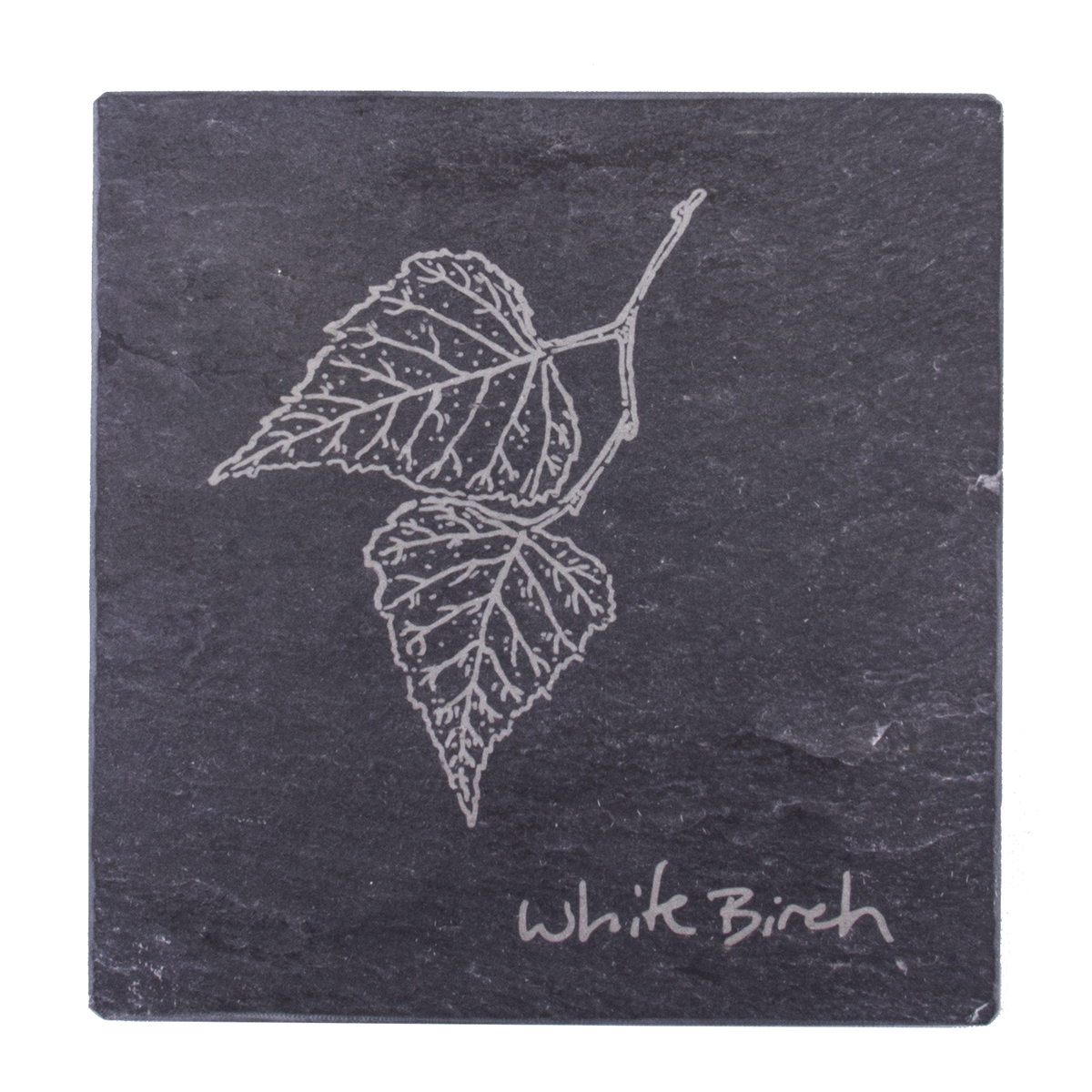 White Birch coaster – River Slate Co.