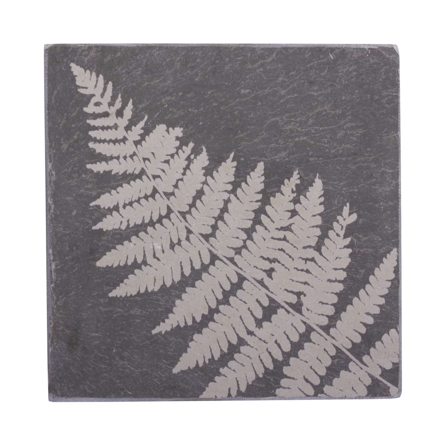 Fern Coaster by River Slate Co.