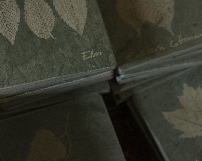Poultney vermont slate coaster details